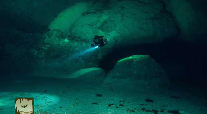 Wet Caves of Bonaire: Morla's Cave